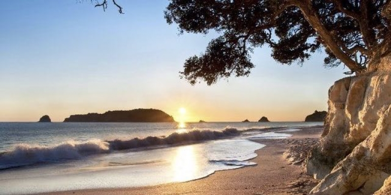 Coromandel's sights and beaches are covered on the Leisure Time Travel five-day tour
